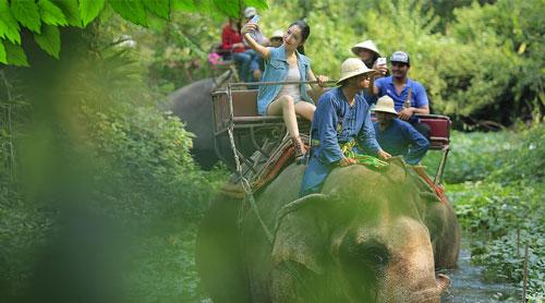 دهکده فیل ها در پاتایا - تایلند